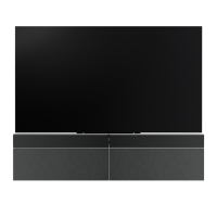 Bang & Olufsen BeoVision Eclipse 55 Black Cover